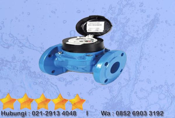 Water Meter ItronDn 50