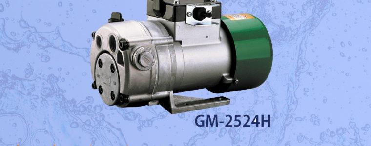 Jual Alat Pompa KOSHIN GM-2524H