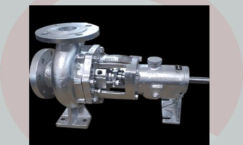 Hot Oil Thermic Fluid Pumps ISO 2858